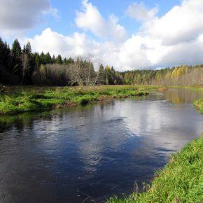 Рыболовный уик-энд 01.10 - 02.10