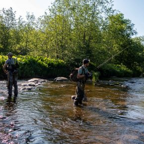 Small trout & grayling fishing 07-08/06/2019