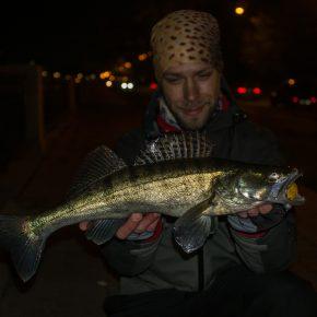 Вечерний streetfishing 29/10/20